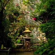 My hideaway in Jogjakarta, Indonesia