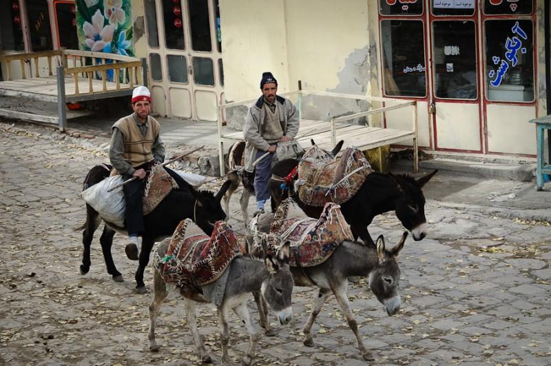 Donkey riders in Iran