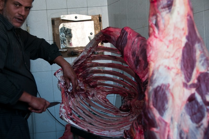 Camel meat Iran